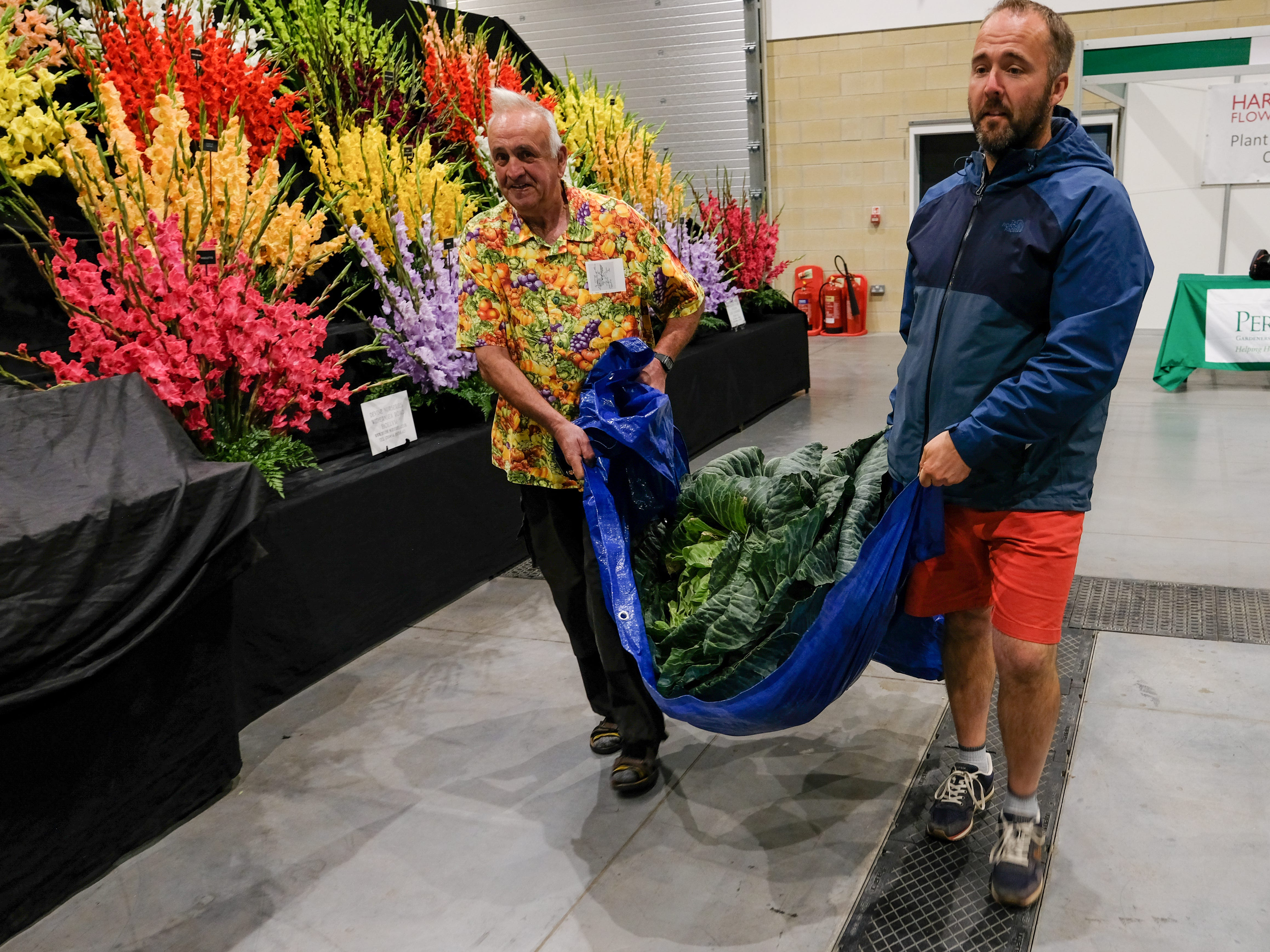 Kevin Fortey and Ian Neale with a Giant cabbage.