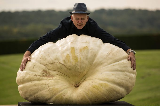 Graham Barrat poses for a photograph with his pumpkin that weighs over 700 pounds which won the the heaviest pumpkin competition on the first day of the Harrogate Autumn Flower Show held at the Great Yorkshire Showground, in Harrogate, northern England, Sept. 14, 2018.