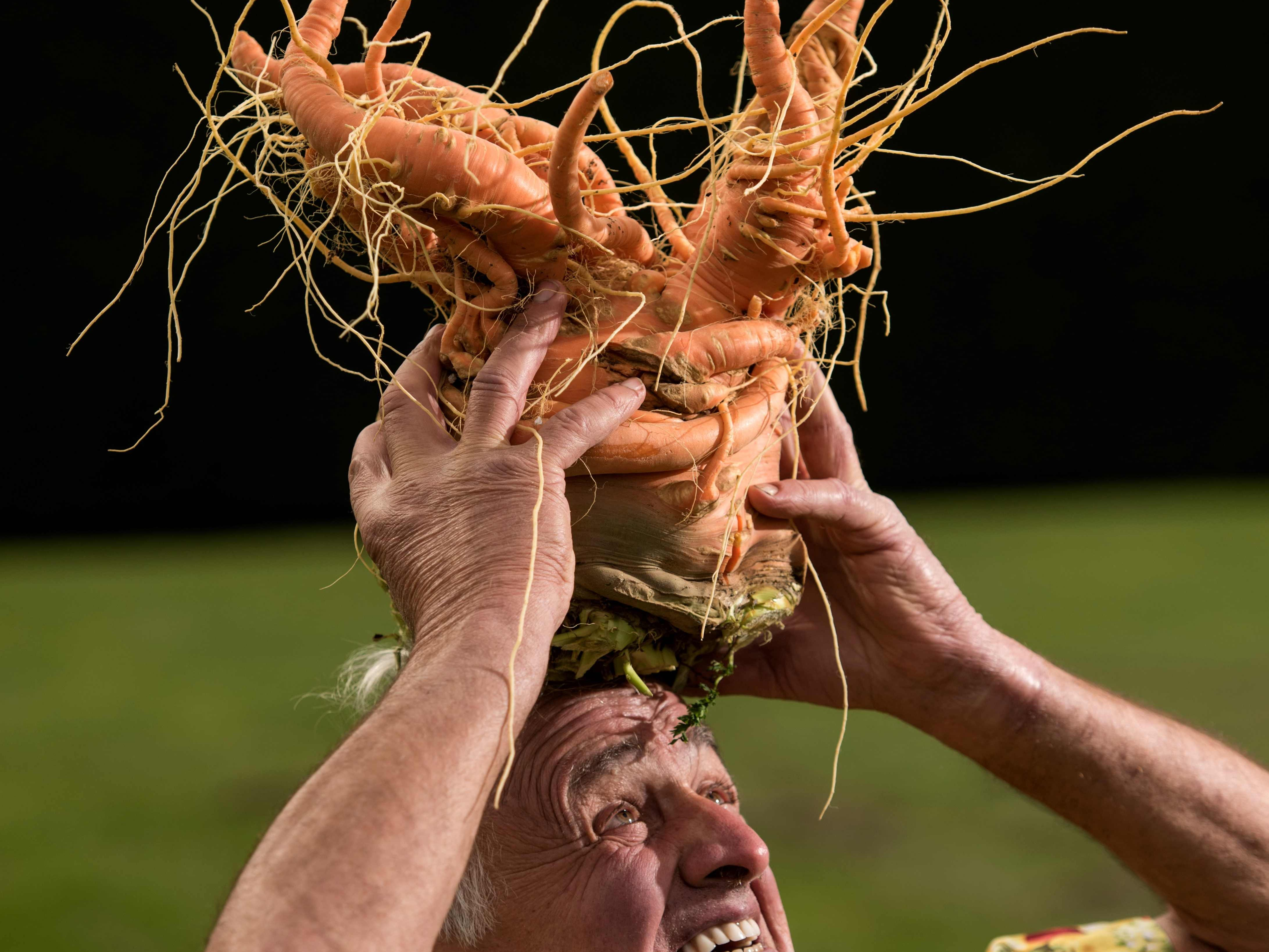 Ian Neale with his carrot which won the the heaviest carrot competition at almost ten pounds.