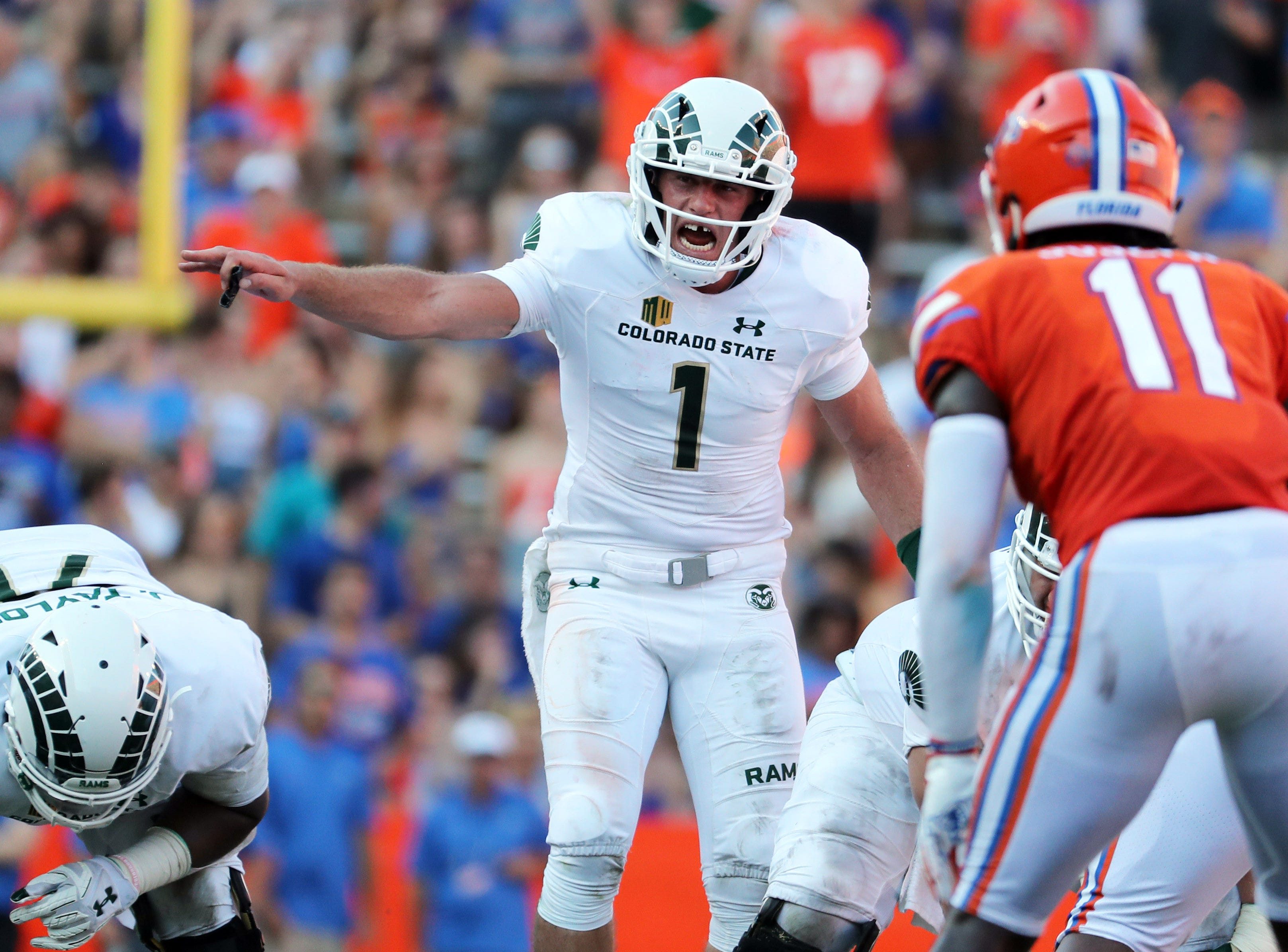 Sep 15, 2018; Gainesville, FL, USA; Colorado State Rams quarterback K.J. Carta-Samuels (1) reacts and points against the Florida Gators during the second quarter at Ben Hill Griffin Stadium. Mandatory Credit: Kim Klement-USA TODAY Sports
