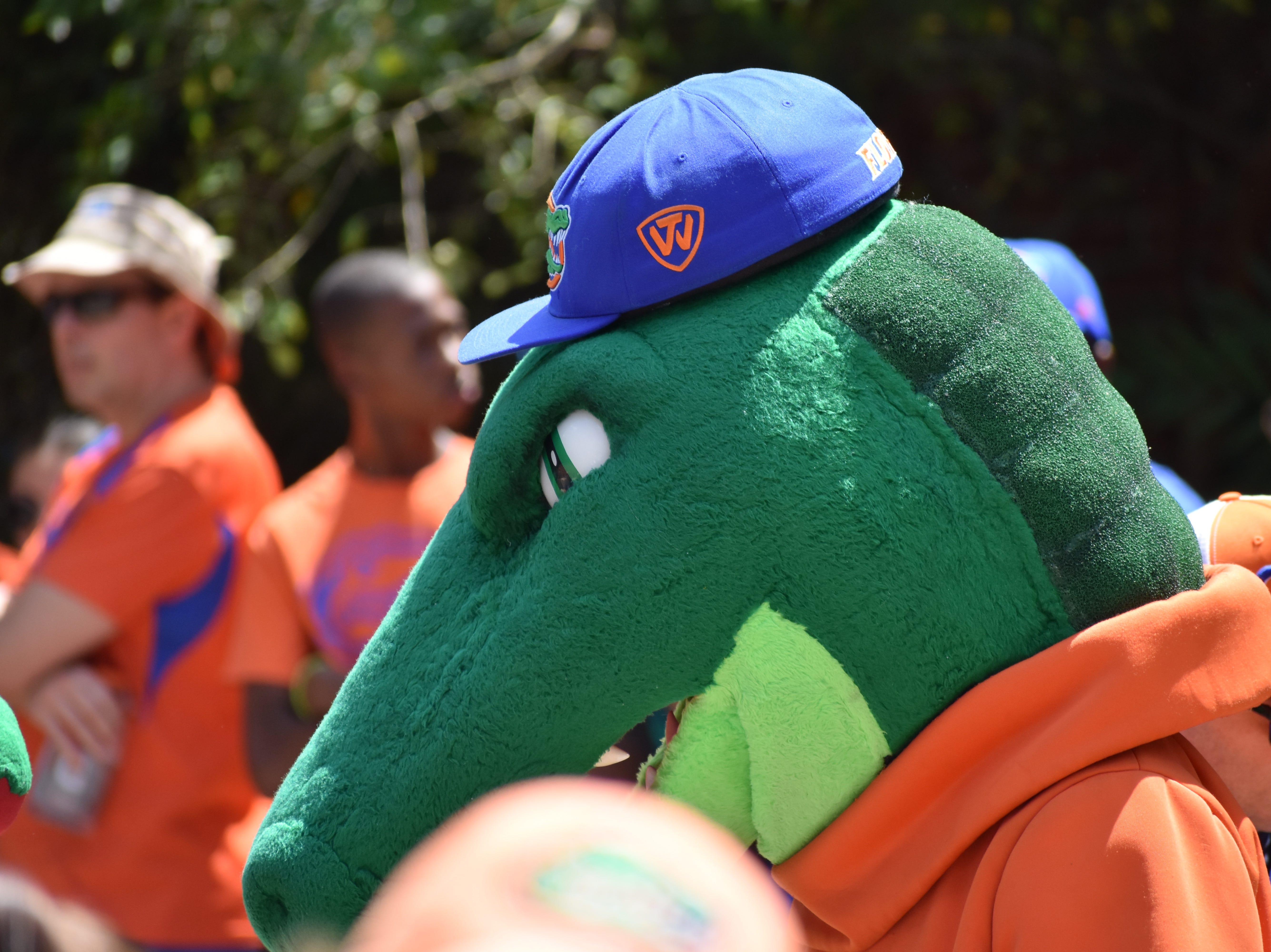 The Florida Gators mascot.