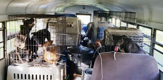 Sixty-four dogs and cats are rescued from shelters in the path of Tropical Storm Florence and shipped on a school bus to a shelter in Alabama on Monday. Trucker Tony Alsup described the rescue as a calling.