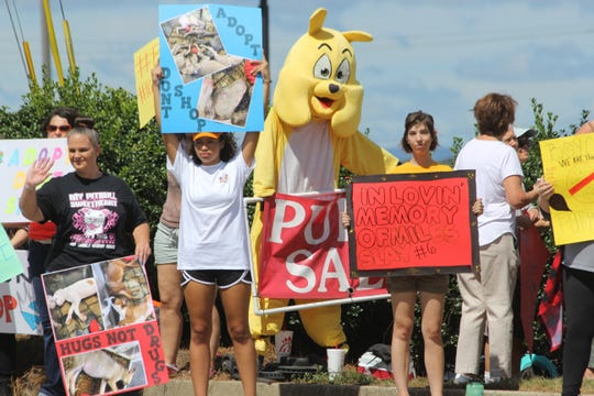 Protesters hold signs near Puppy Zone on Sept. 15 after allegations were made that the store mistreats its animals and receives dogs from puppy mills.