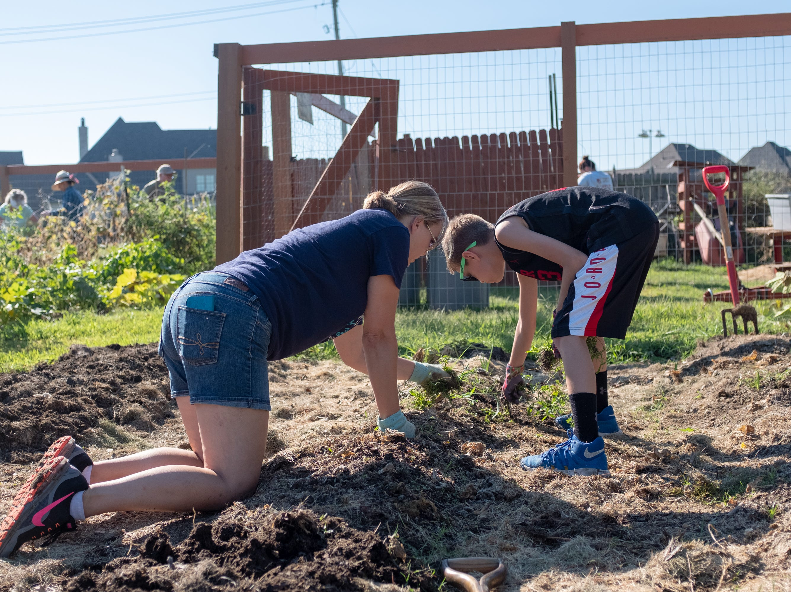 Andria Prouty and her son Andrew clear old plants in the Epihpany Community Garden in Collierville on Saturday, Sept. 15, 2018.