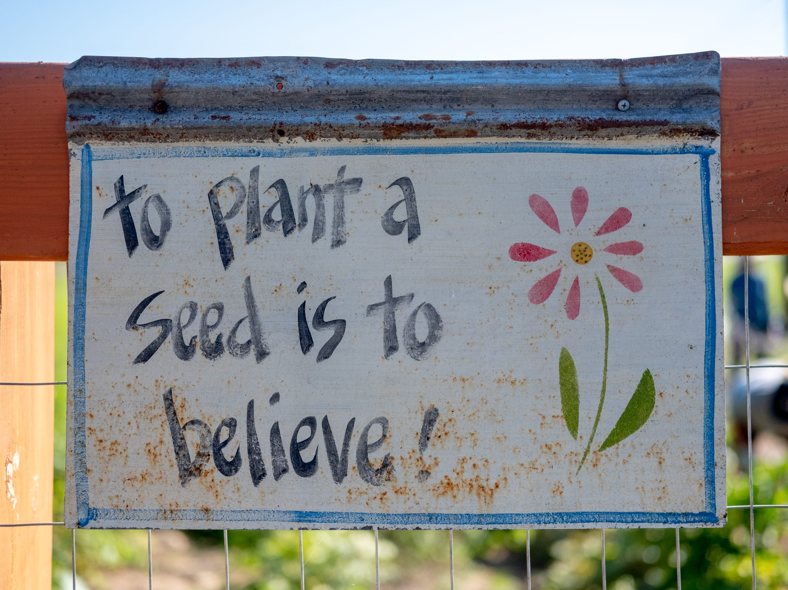 A hand painted sign hangs over one of the entrances to the Epiphany Community Garden in Collierville on Saturday, Sept. 15, 2018.