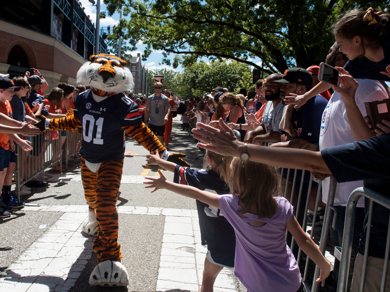 Auburn mascot Aubie high fives fans during the Tiger Walk outside Jordan-Hare Stadium in Auburn, Ala., on Saturday, Sept. 15, 2018.