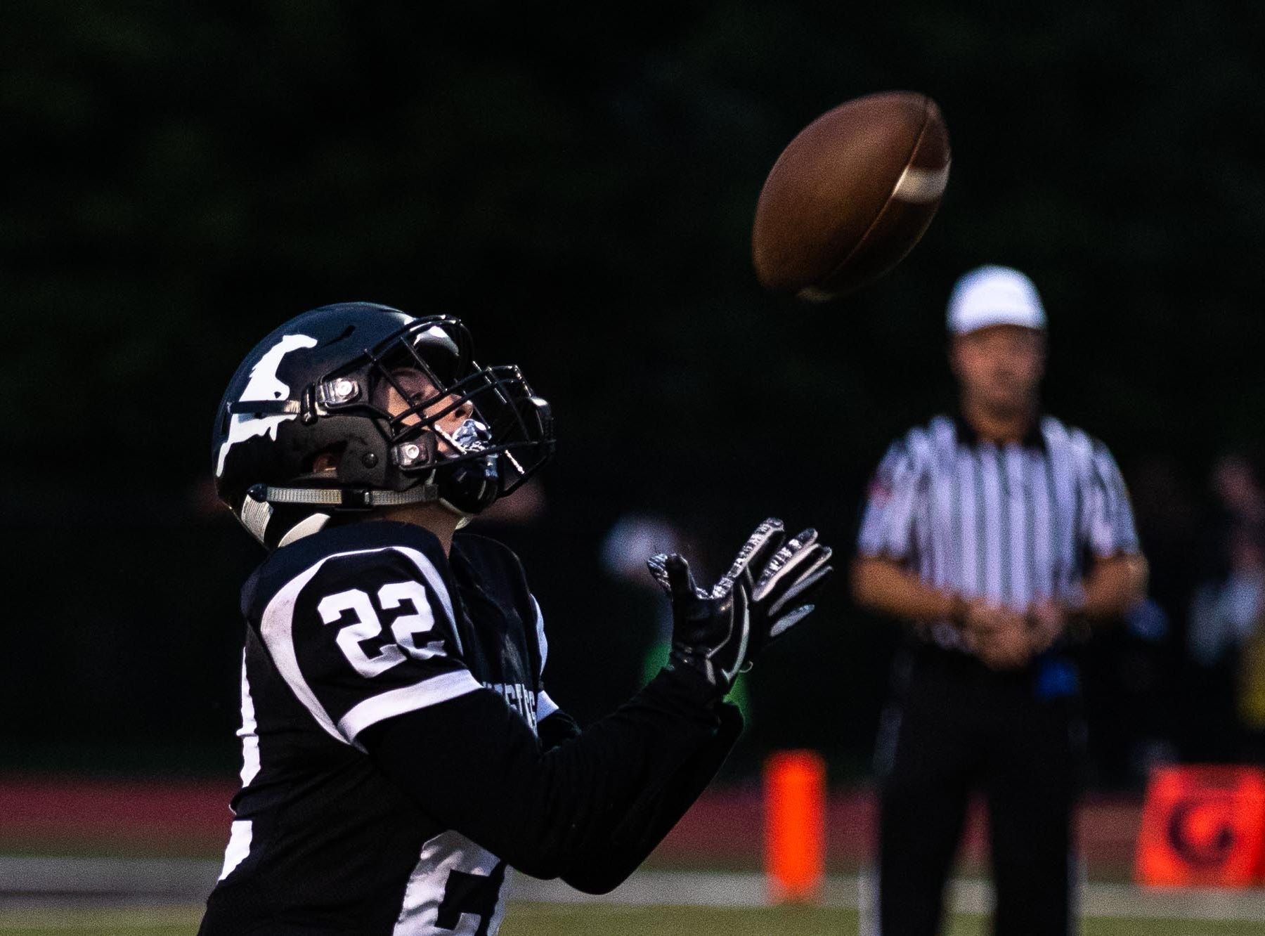 South Western's Aaron Fry (22) catches the bal during a football game between South Western and Dallastown, Friday, Sept. 14, 2018, at South Western High School in Penn Township. Dallastown won, 35-7.