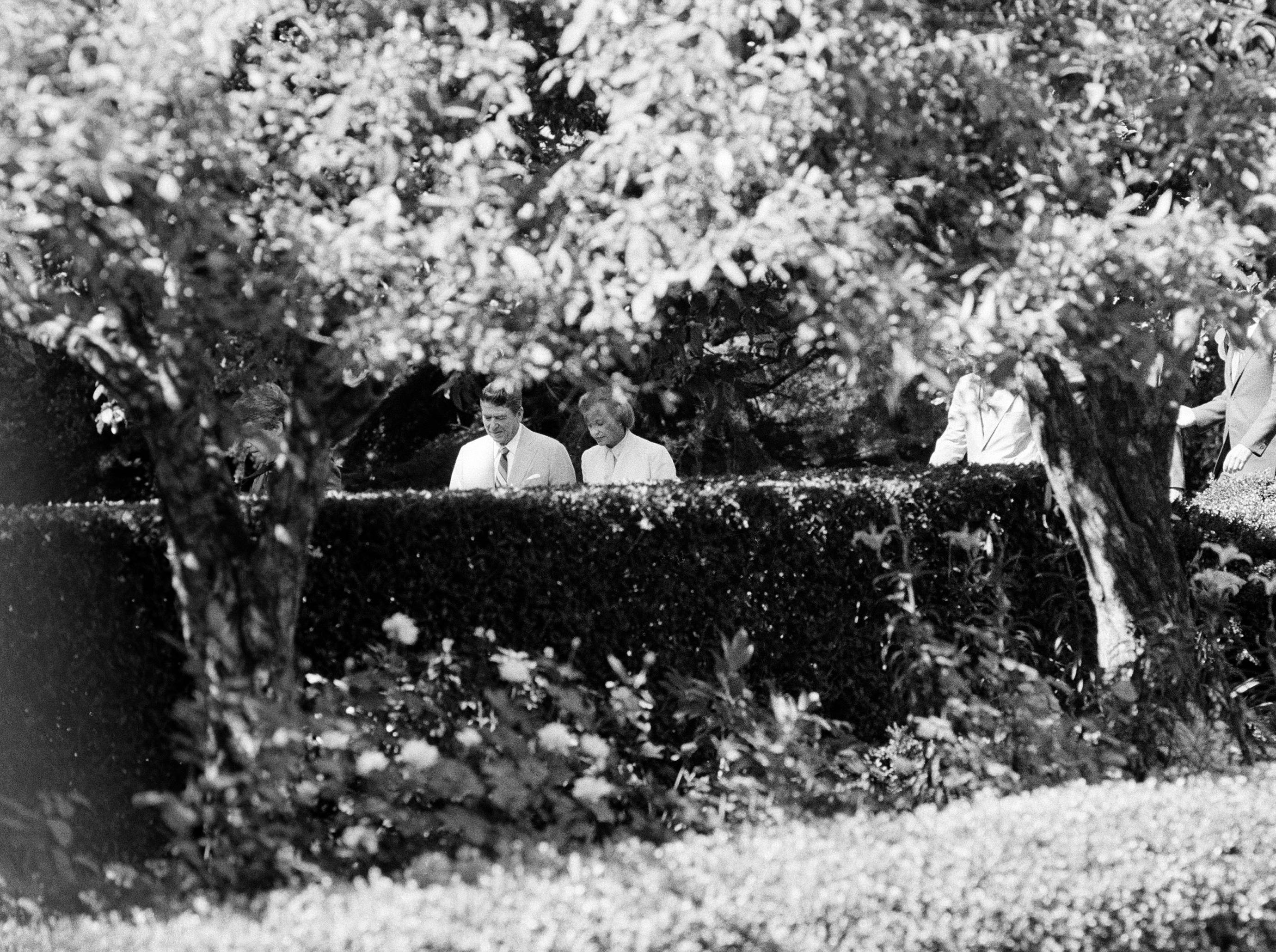President Reagan and Supreme Court nominee Sandra Day O'Connor are surrounded by foliage as they stroll through the Rose Garden of the White House, July 15, 1981.  O'Connor was the first woman to be nominated to the position.