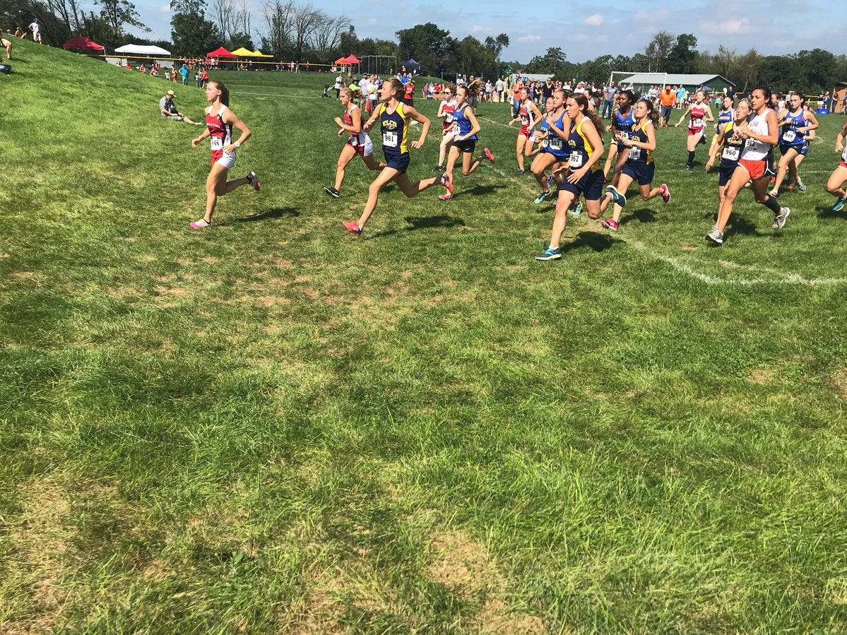 The girls field takes off from the starting line to begin the Lebanon County Cross Country Championships on Saturday at Gloninger Woods Park.