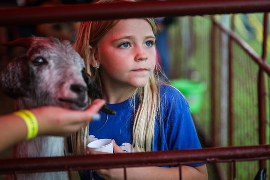 Avery Zamora, 8, feeds a goat at the petting zoo during River Fest Saturday, Sept. 15, 2018, in the Bosque.