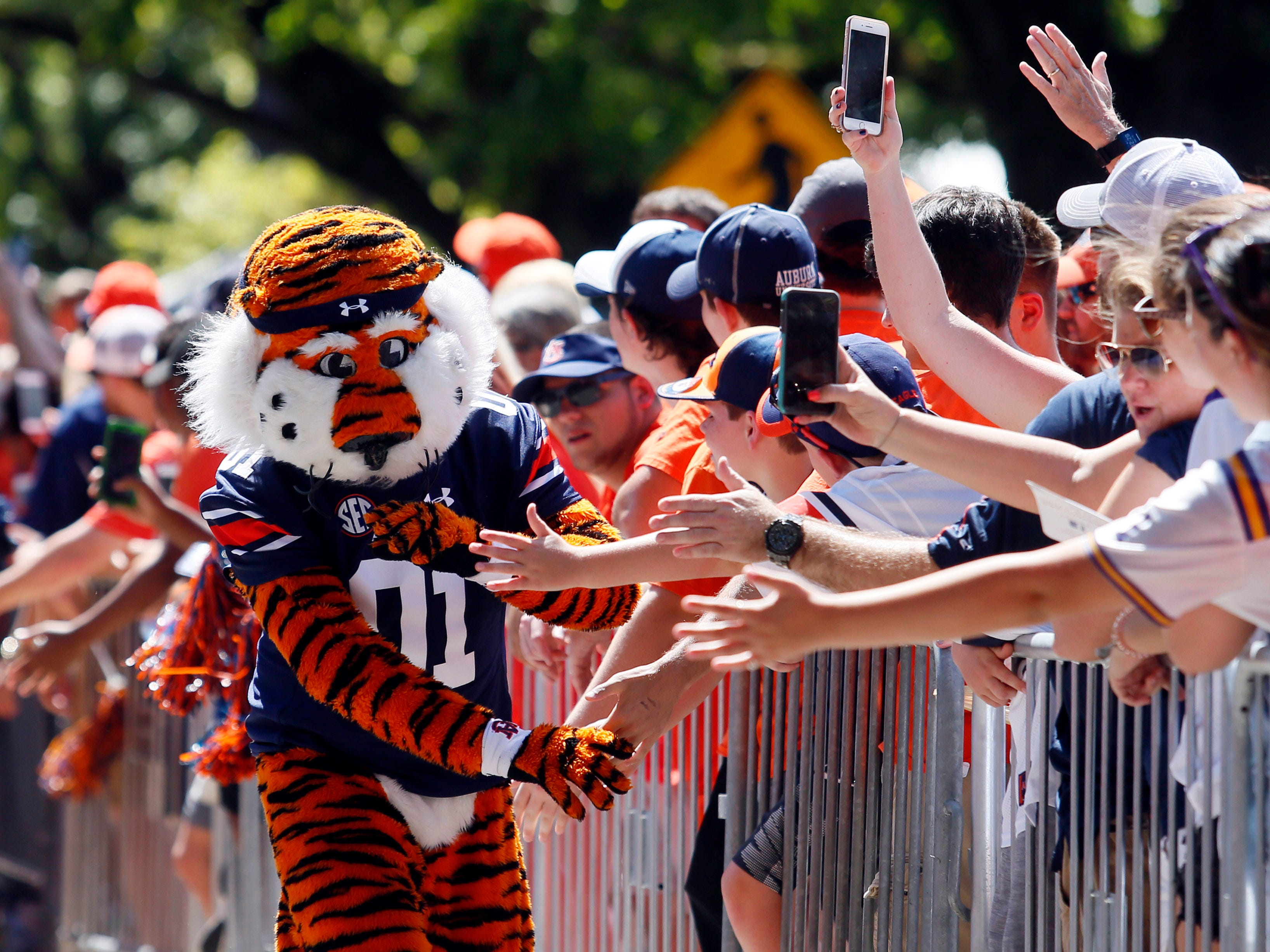 Aubie, the Auburn Tigers mascot, goes through Tiger Walk before the game against the LSU Tigers.