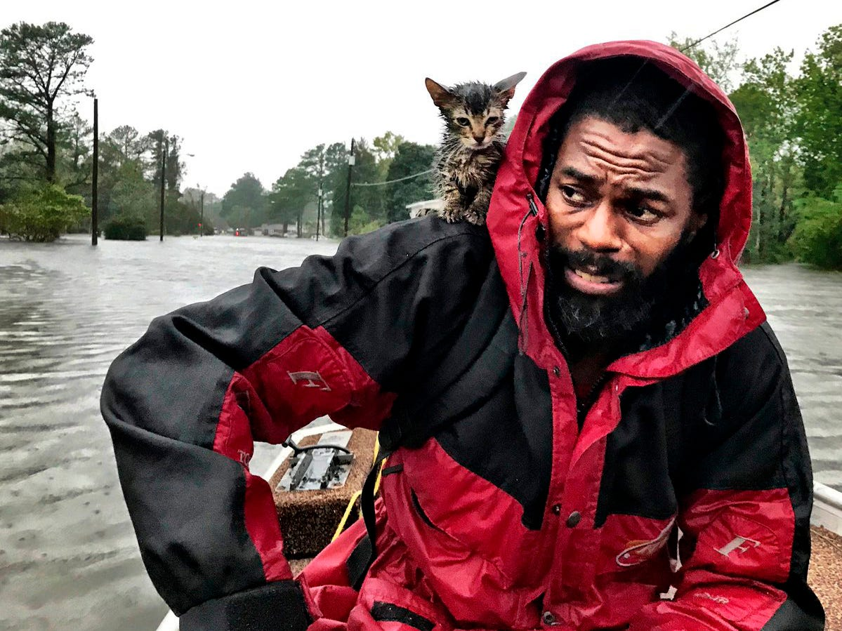 "Robert Simmons Jr. and his kitten ""Survivor"" are rescued from floodwaters after Hurricane Florence dumped several inches of rain in the area overnight, Friday, Sept. 14, 2018, in New Bern, N.C."