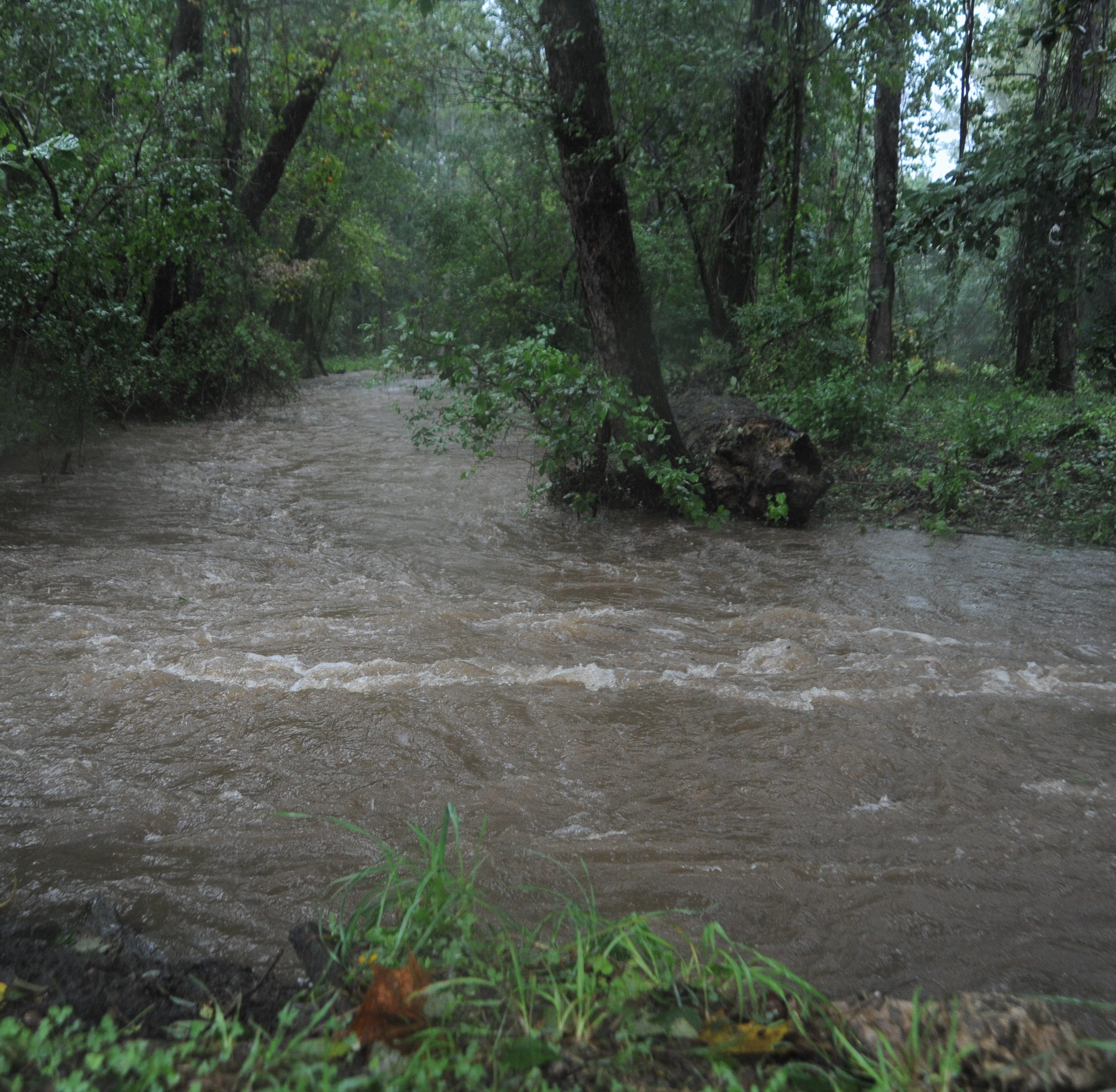 Tropical Depression Florence begins its assault on the Swannanoa Valley