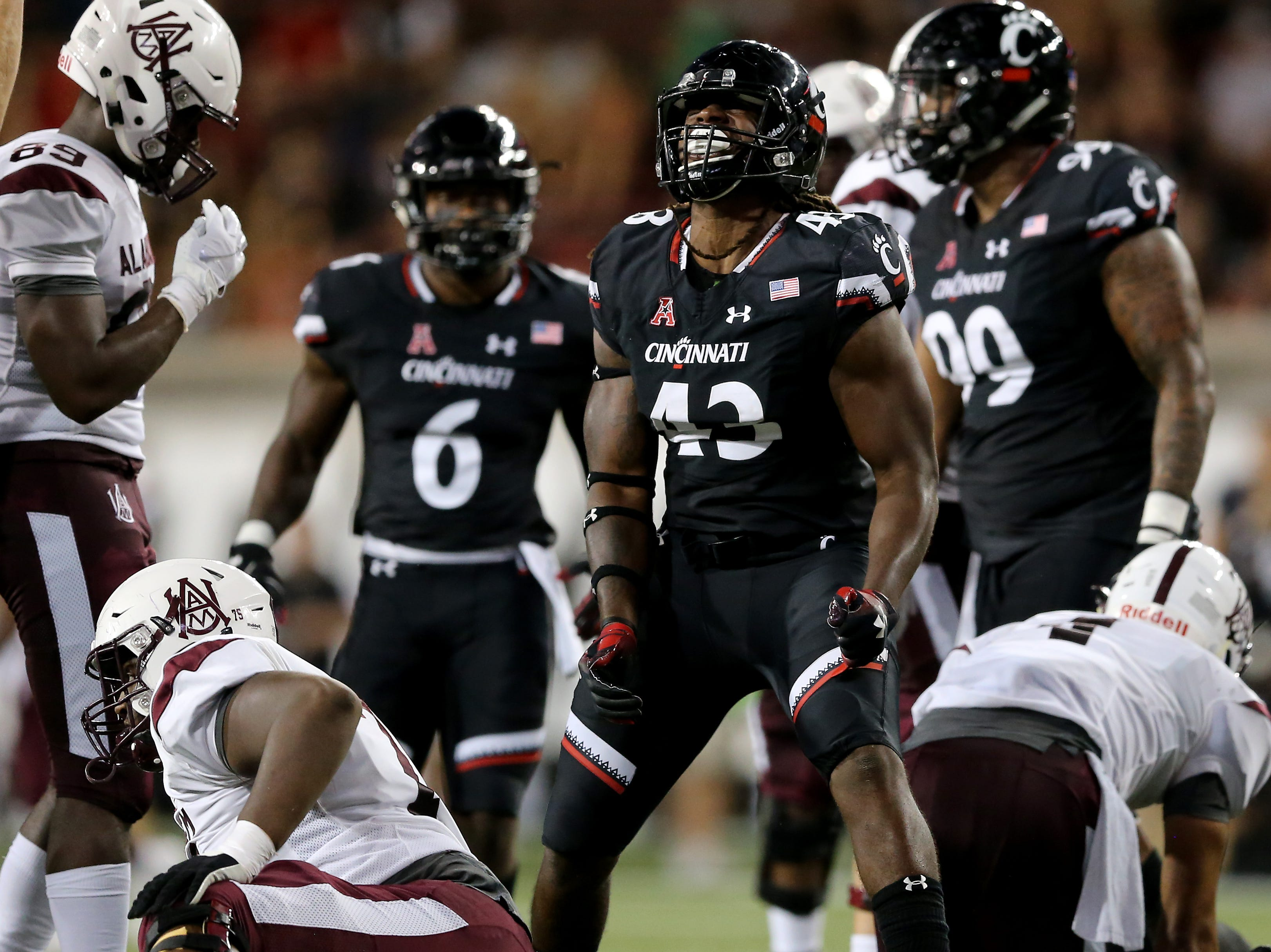 Cincinnati Bearcats defensive end Malik Vann (42) celebrates a sack of Alabama A&M Bulldogs quarterback Aqeel Glass (4), right, in the second quarter during a college football game between the Cincinnati Bearcats and the Alabama A&M Bulldogs, Saturday, Sept. 15, 2018, at Nippert Stadium in Cincinnati.
