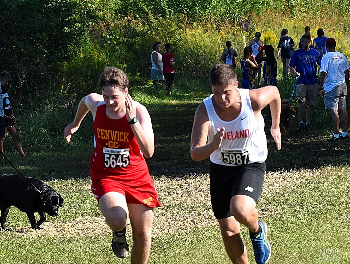 Fenwick's Matthew Buzek and Loveland's Dylan Sams race hard to the finish at the 2018 Milford Cross Country Invitational, Sept. 15, 2018.