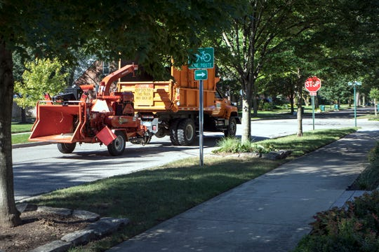 A wood chipper passes down the street where several silver maples had previously been removed in Huntington Woods on Sept. 11, 2018.