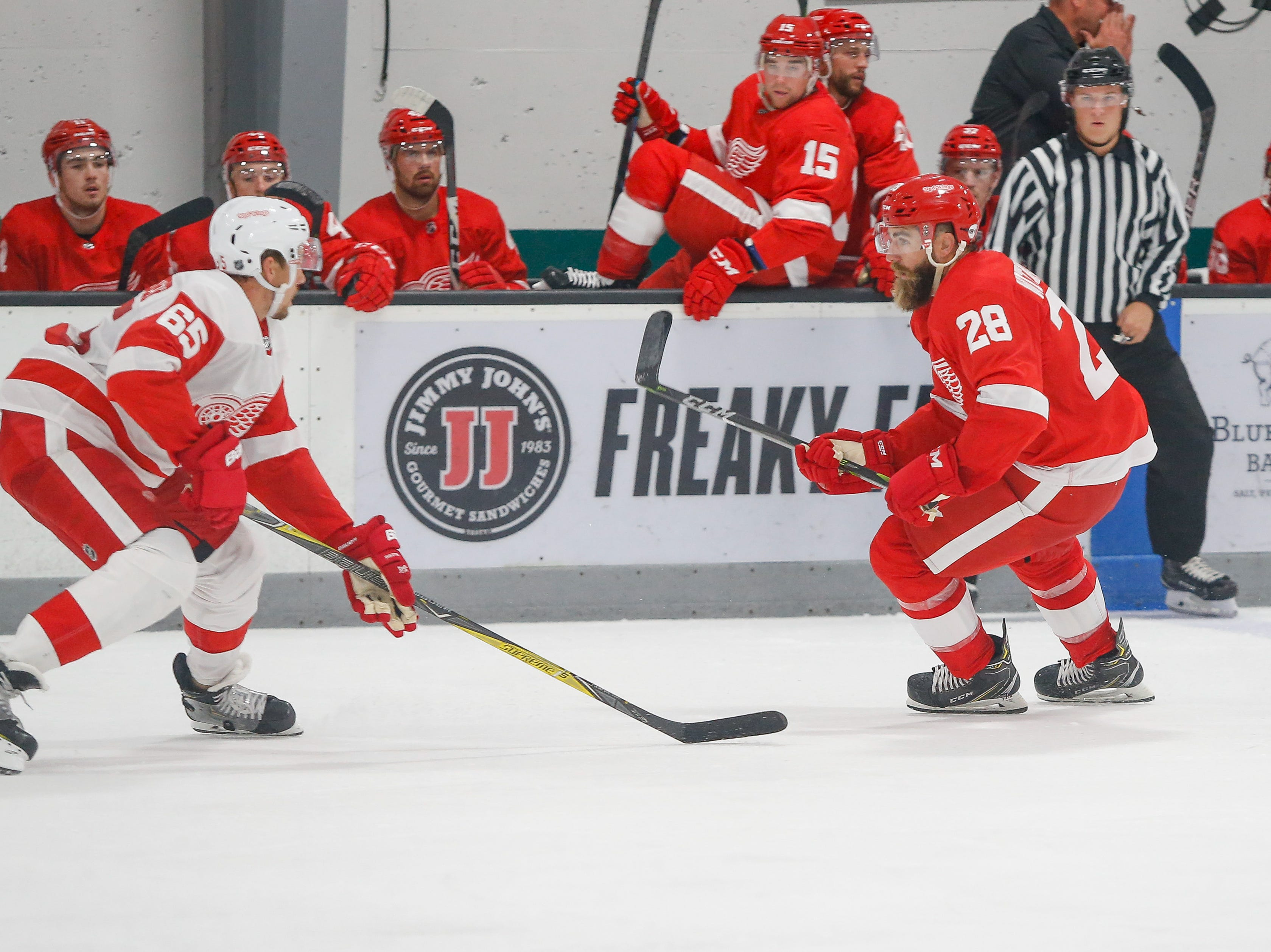 Danny DeKeyser, left, defends against Luke Witkowski. Both Red Wings are former Western Michigan Bronco Hockey teammates.