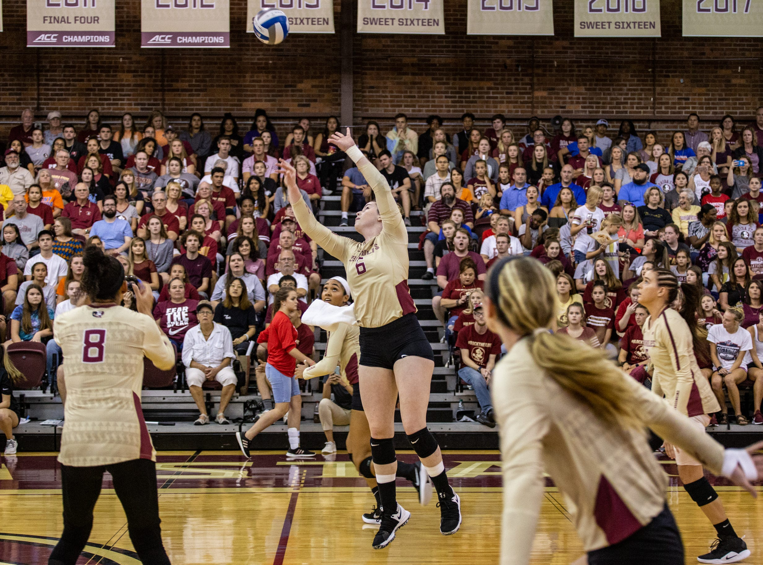 FSU Volleyball team captain Brianne Burkert (6) sets the ball over the net during the first set against Florida at Tully Gymnasium on Wednesday.