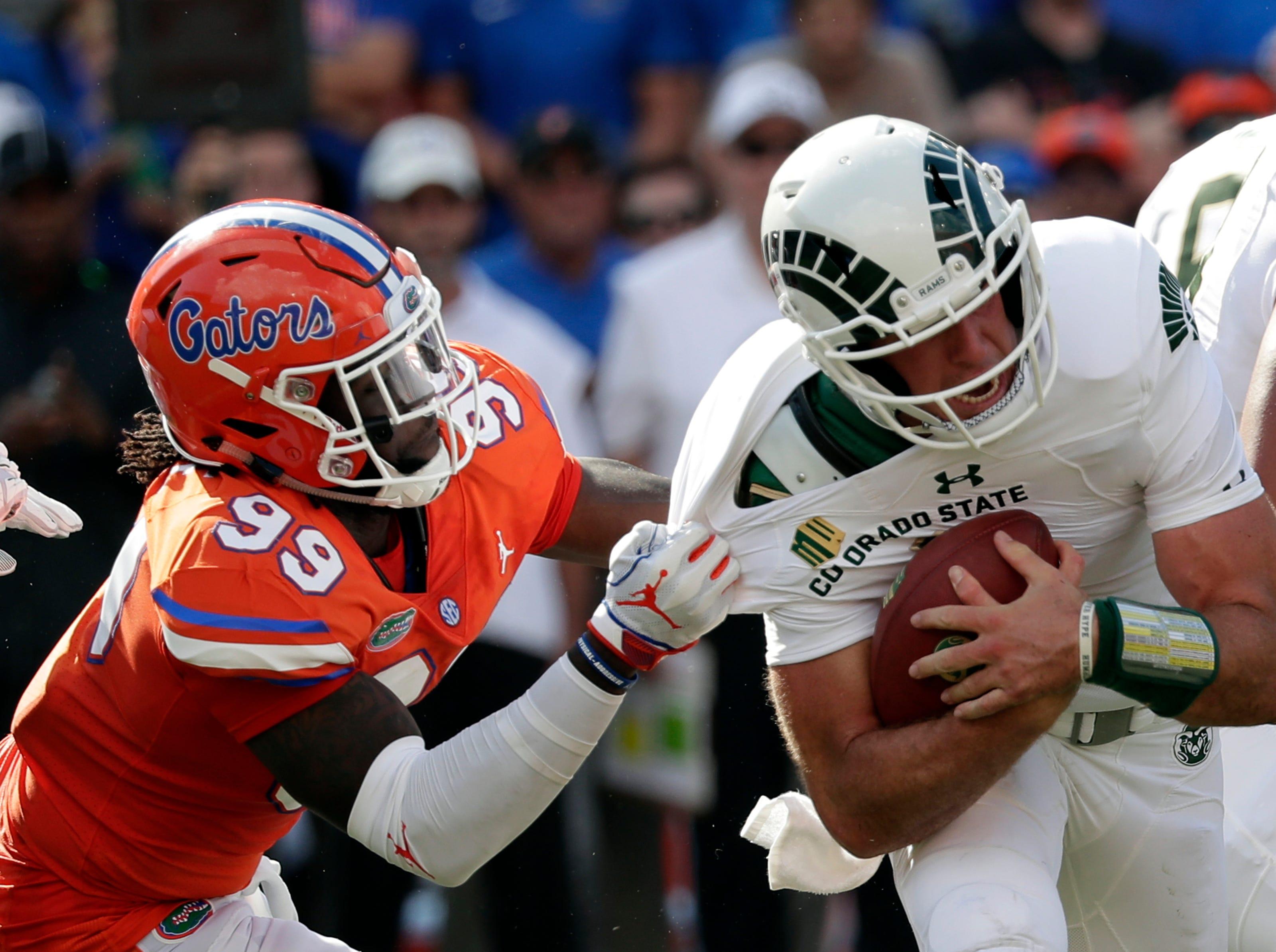 Florida defensive lineman Jachai Polite (99) sacks Colorado State quarterback K.J. Carta-Samuels during the first half of an NCAA college football game, Saturday, Sept. 15, 2018, in Gainesville, Fla. (AP Photo/John Raoux)