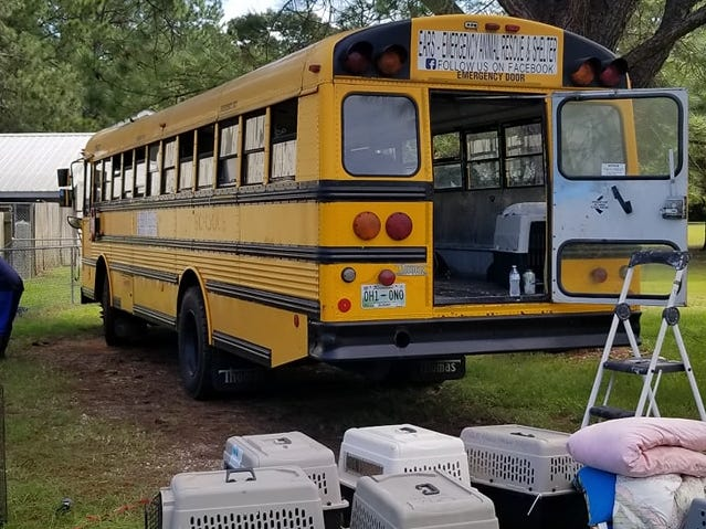 Tony Alsup used his school bus to transport South Carolina shelter animal to a safer location.