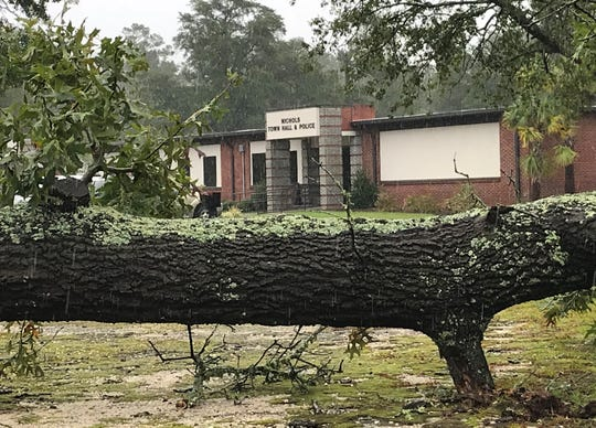 A tree toppled by Hurricane Florence sits in front of Nichols Town Hall on Sept. 16, 2018.