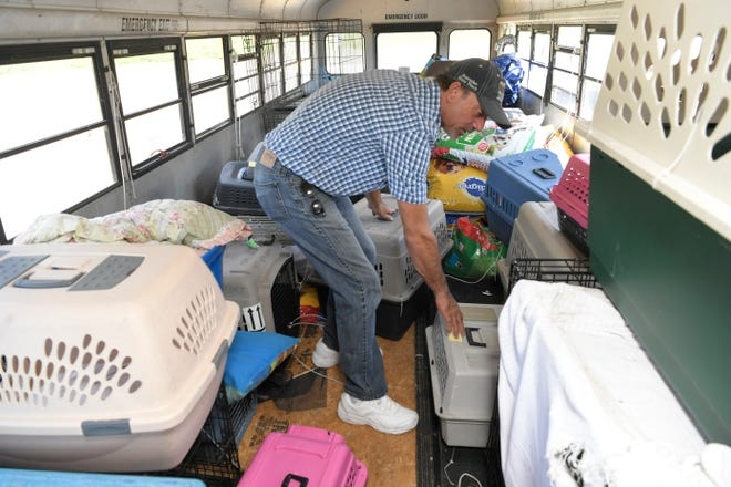 Animal crates fill East Tennessee resident and truck driver Tony Alsup's school bus that he purchased to rescue shelter animals during natural disasters.