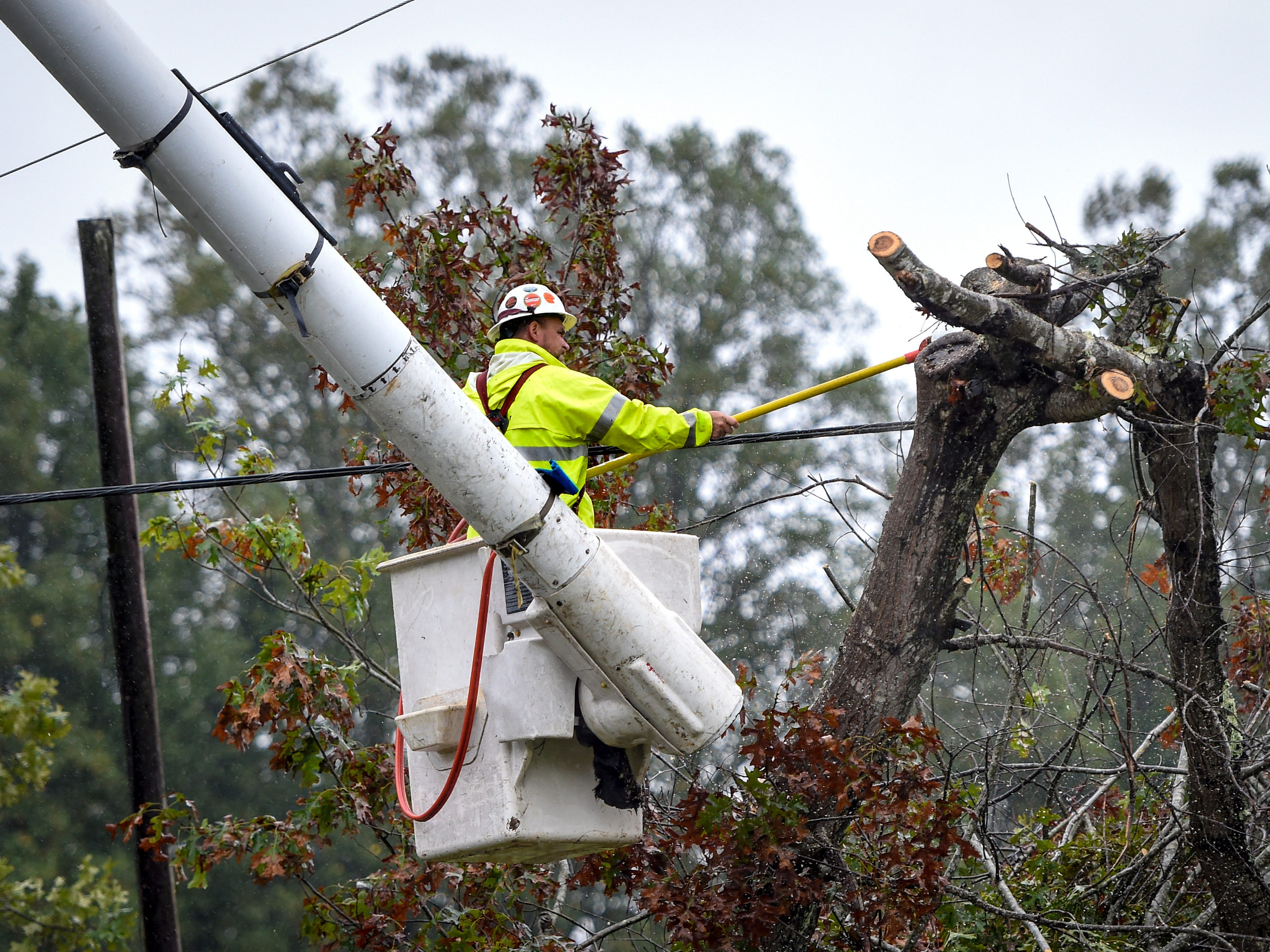 A worker from Asplundh Tree Expert Company cuts away tree limbs from a power line after a huge tree fell on Spainhour Road as a result of steady rainfall from the effects of Tropical Storm Florence, Sunday, Sept. 16, 2018 in Morganton, N.C.