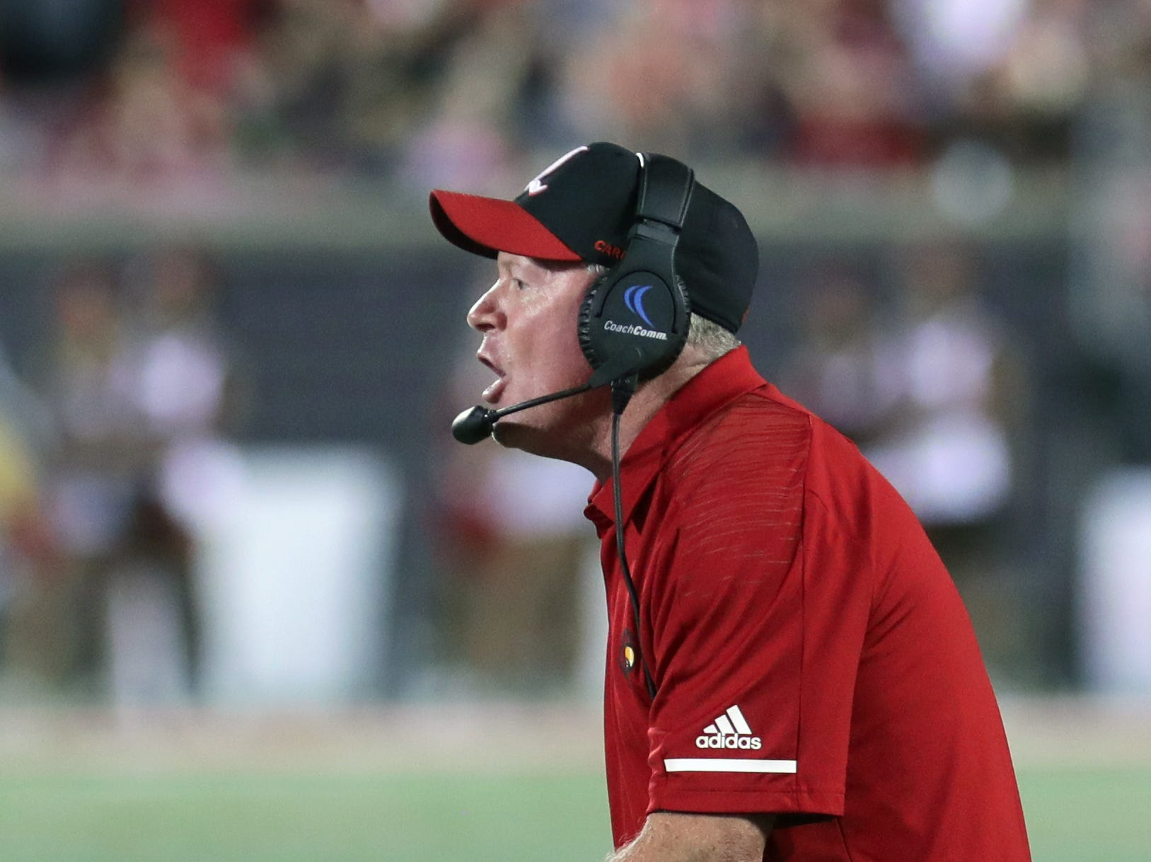 Louisville's coach Bobby Petrino coaches his team from the sidelines. 