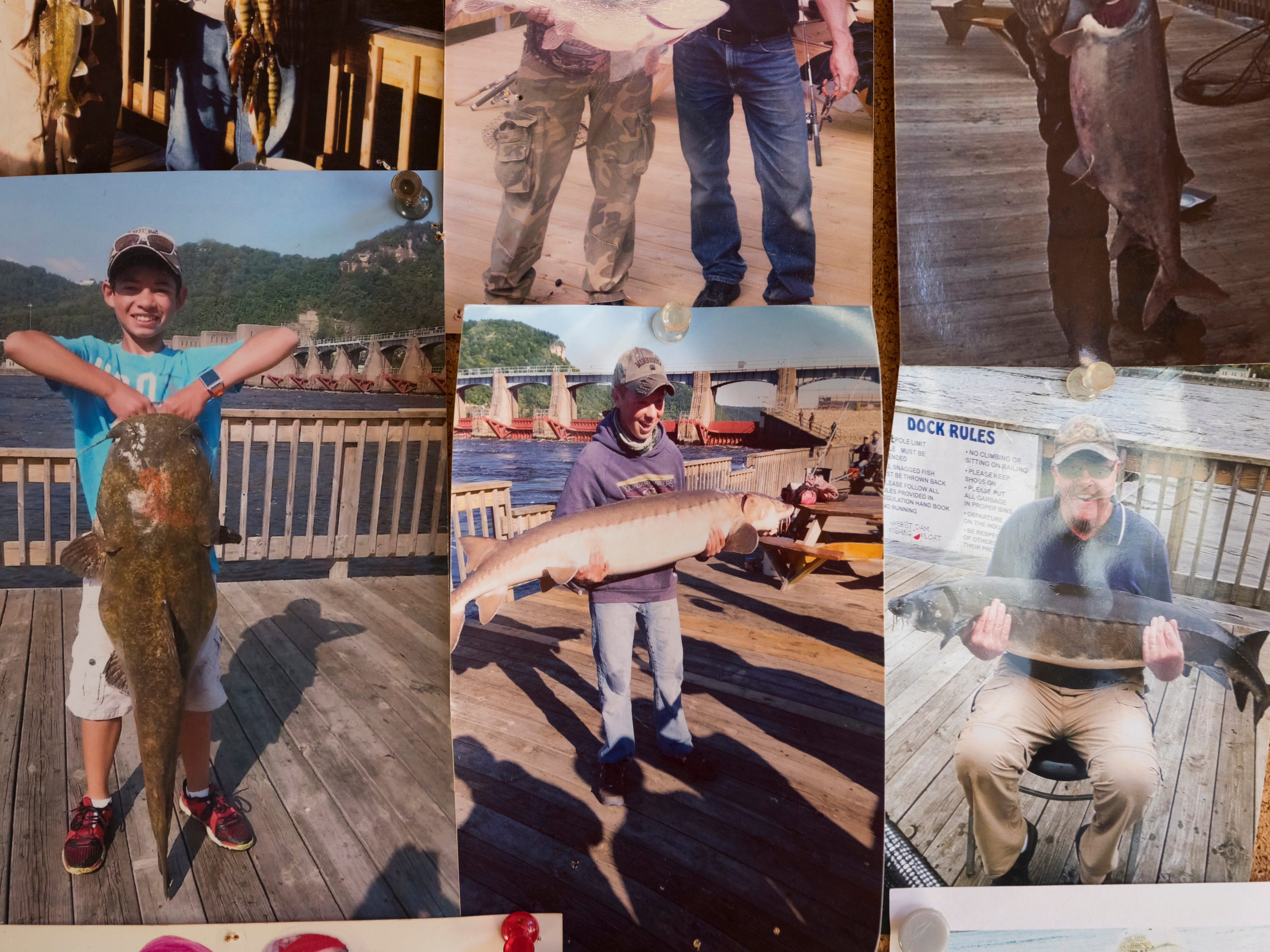 Photos of customers with notable fish Sunday on the Best Dam Fishing Float on the Mississippi River in La Crosse.