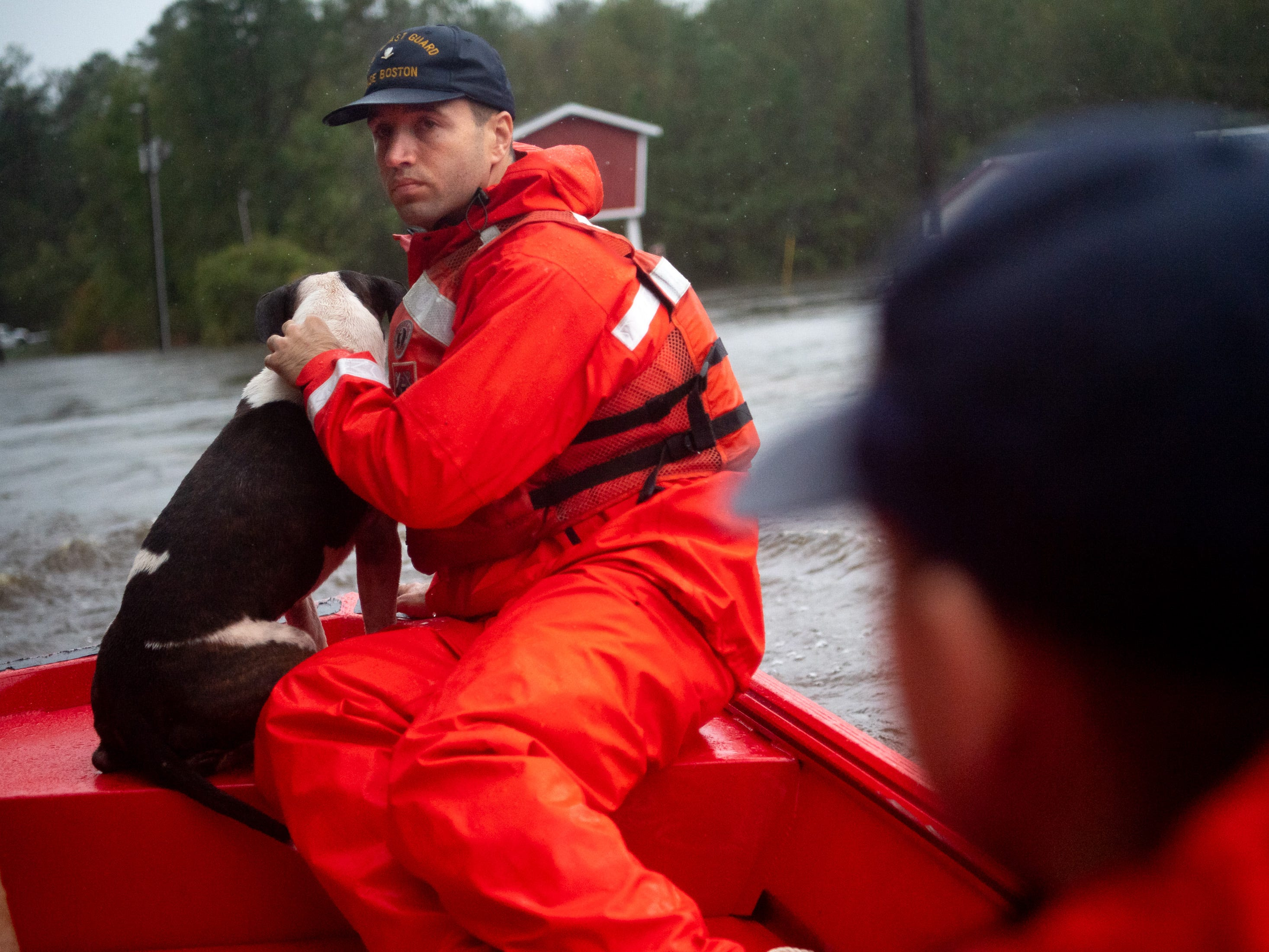 Coast Guard SK3 Mitchell Moretti, of Boston, Mass., helps rescue one of fourteen dogs from a flooded home in Columbus County, N.C., Sunday, Sept. 16, 2018.