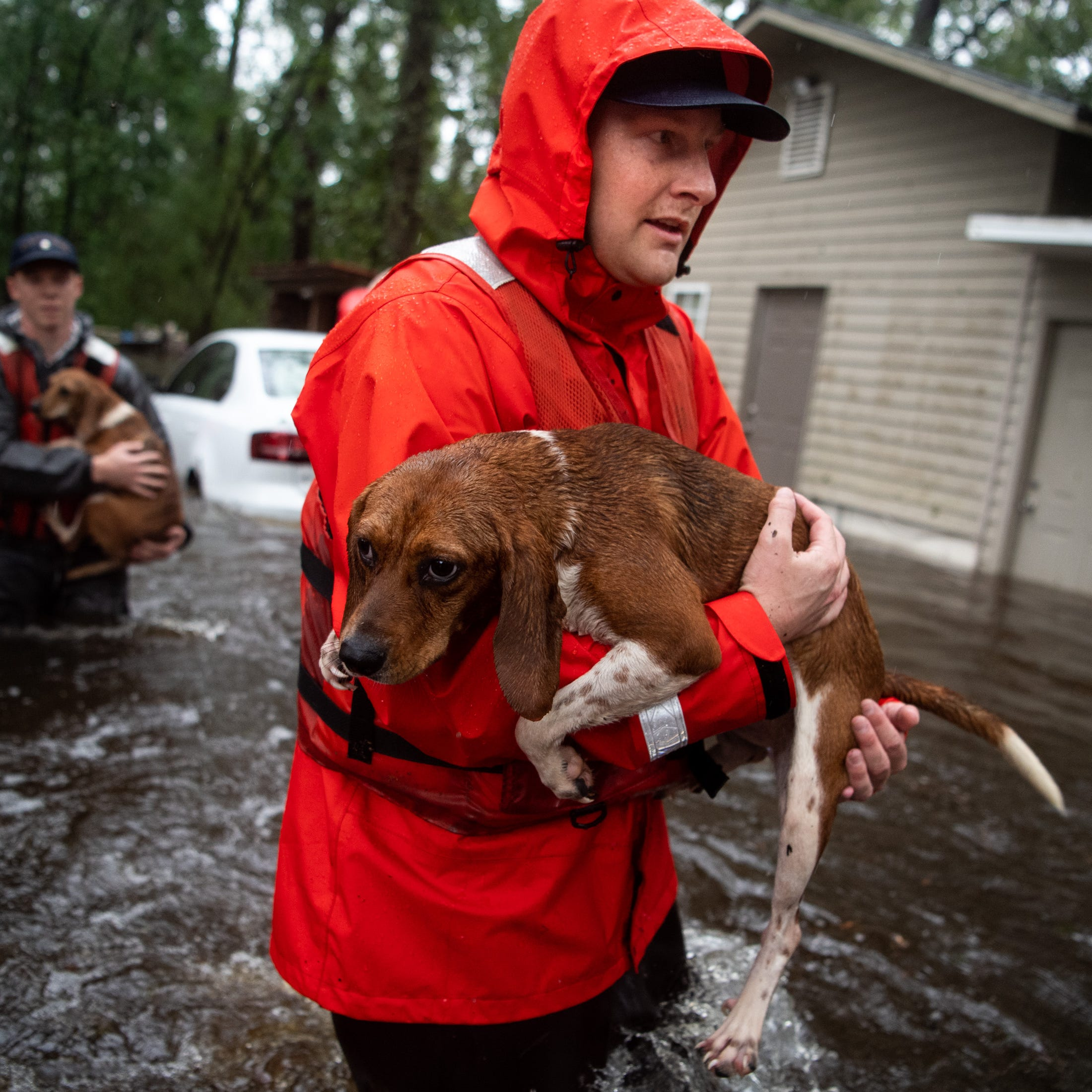 How to get involved in Florence relief efforts