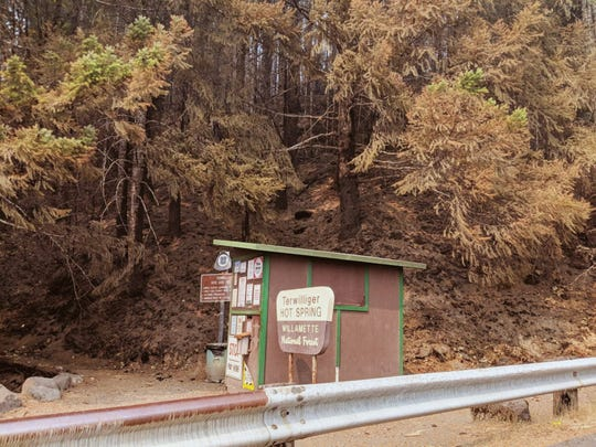 Trailhead of Terwilliger Hot Springs after fire burned across it.