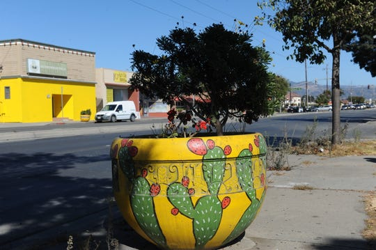 Planters along East Alisal Street, where Salinas' El Grito parade took place this year.