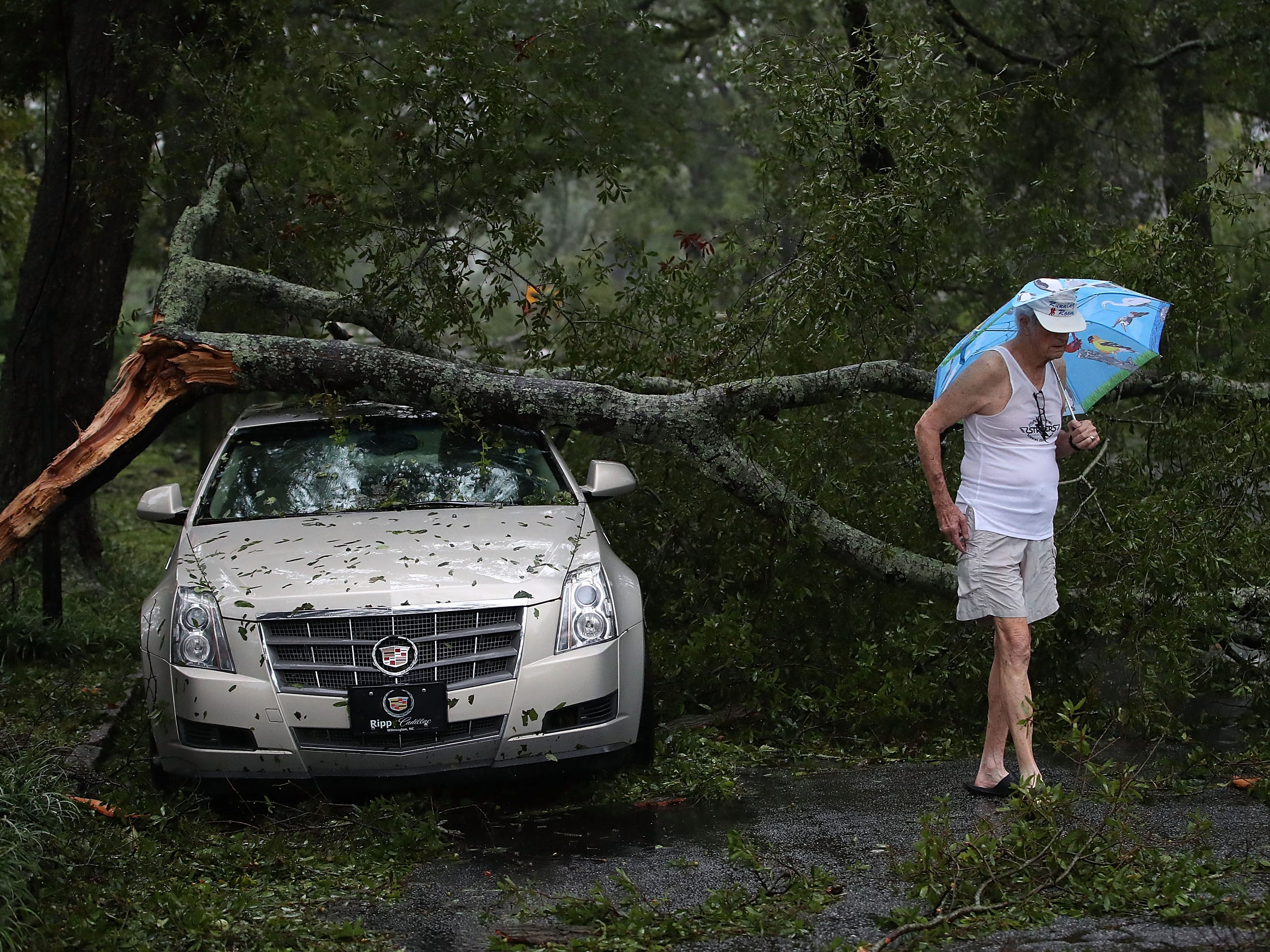 Robert Dolman walks past a car that has a large tree limb on it, Sunday, Sept. 16, 2018 in Wilmington, N.C.