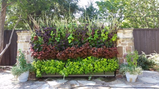 LiveWall manufactures state-of-the-art garden walls for residential and commercial applications.