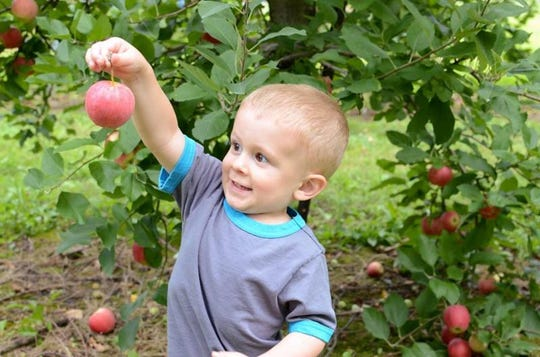 It's that time of yearagain and Von Thun's Country Farm Market in South Brunswick will open their maze for the fall onSaturday, Sept.22, kicking off the first of six Fall Harvest weekends.