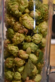 Hops is one of the many Montana grown ingredients.