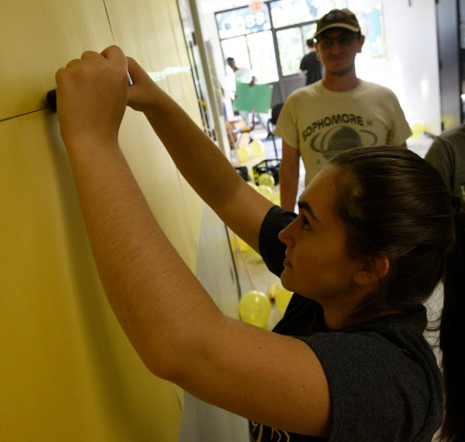 Harrison senior Melinda Hakaj tapes yellow cardboard pannels to the walls of the senior hallway preparing for the school's last spirit week.Thomas Lichtenberg looks on.