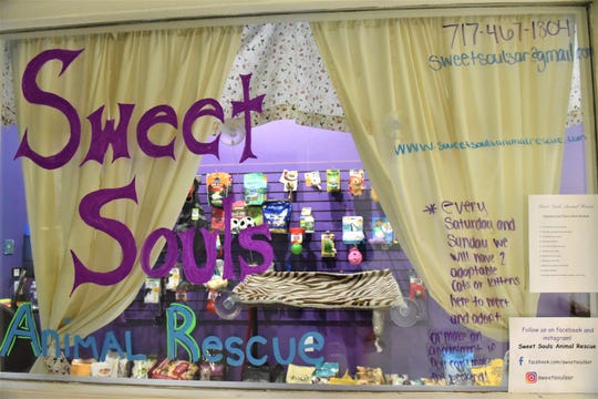 Sweet Souls Animal Rescue, in addition to having pets for adoption, sells discounted pet supplies at 1800 Baltimore Street in Hanover.