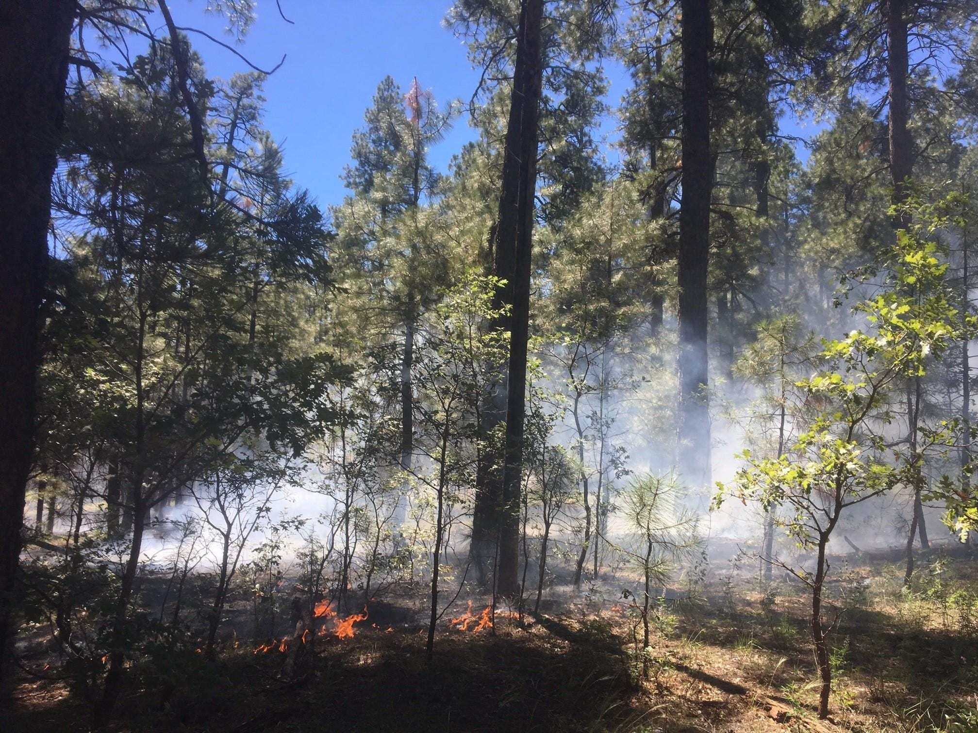 The Perkins Fire as seen on Aug. 31, 2018.