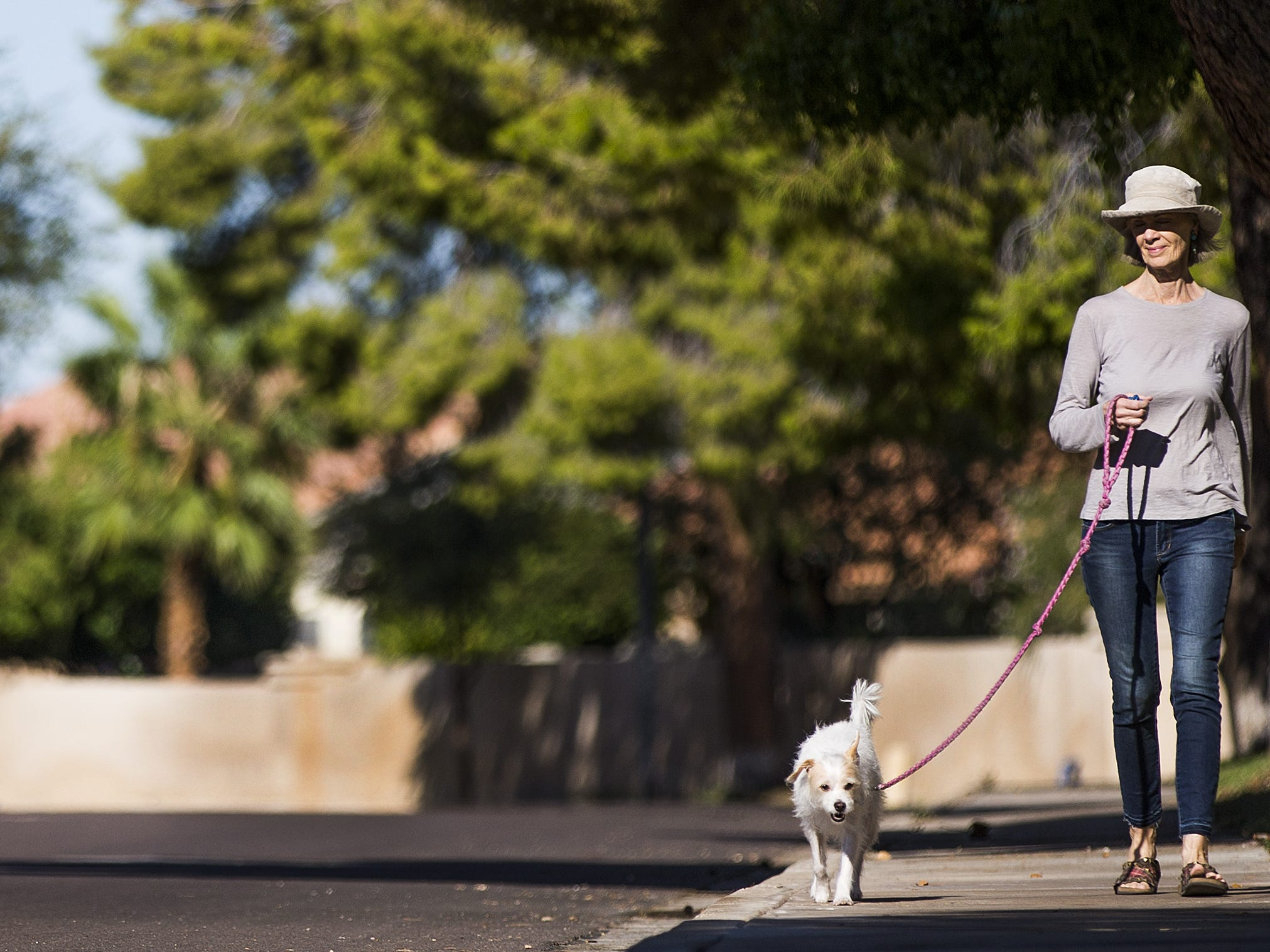 Michelle Gailiun walks her dog, Junie B, along Edgewater Drive in Peoria, where tree roots damaged walls enough that the HOA has told residents some of the trees may have to go.