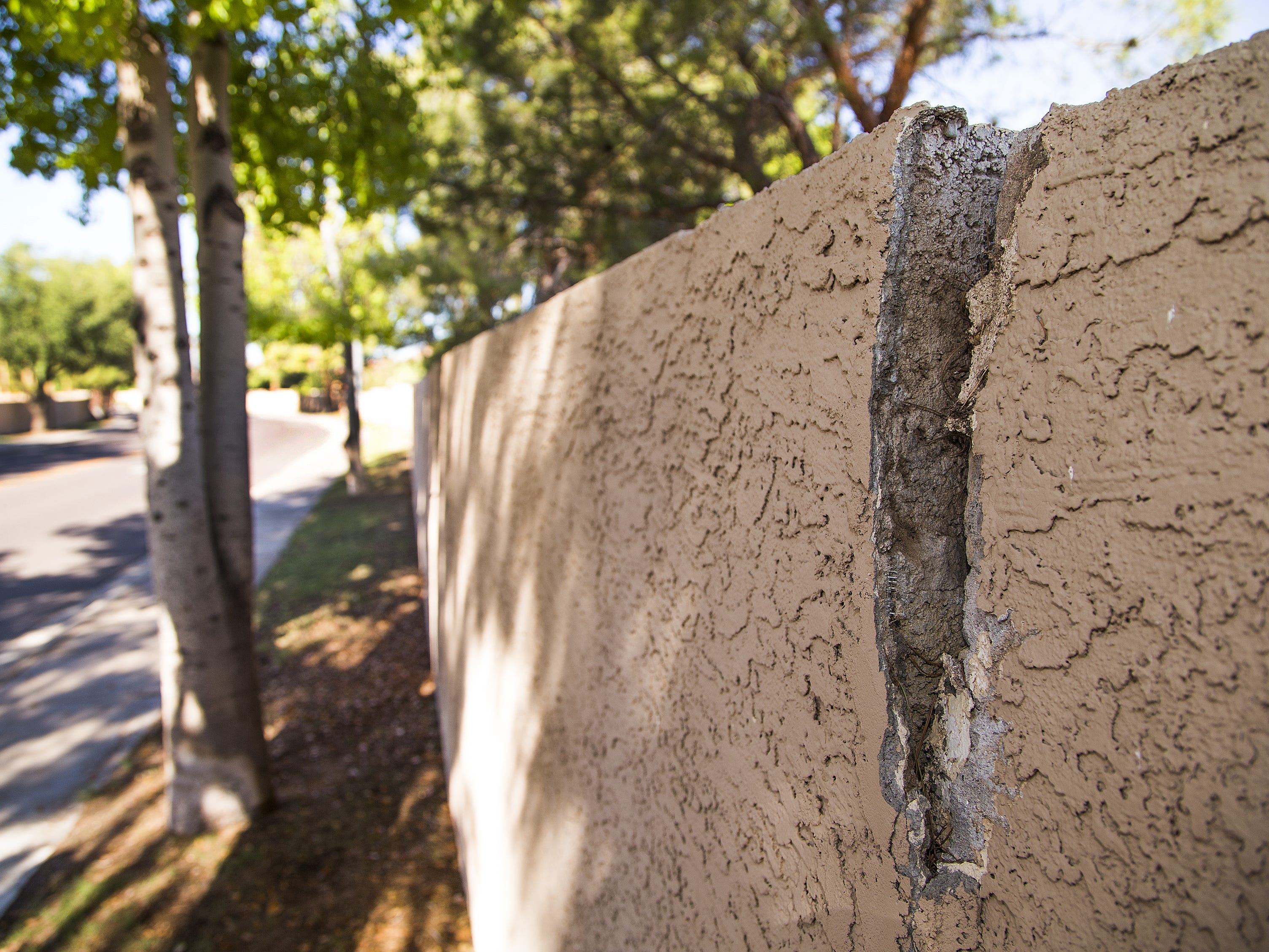Roots from some trees have caused cracks in privacy walls along Edgewater Drive in Peoria. The HOA has told residents that they may have to cut down some of the trees.