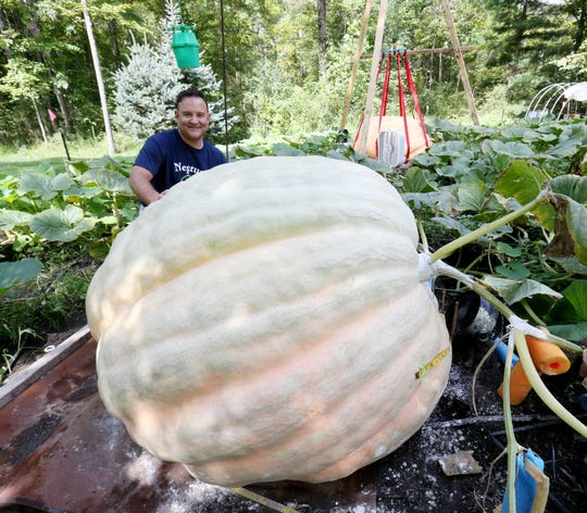 Tony Scott kneels behind one of the giant pumpkins he has grown at his home in Wappingers Falls on September 17, 2018.