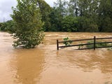 The South River continued to rise Monday, Sept. 17, 2018 as Tropical Storm Florence hit the area. Some parts of the river reached as high as 12 feet.
