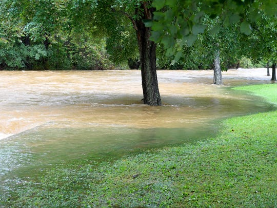 A tree normally on dry land is surrounded by water Back Creek spills over its backs adjacent Howardsville Turnpike in Sherando on Monday, Sept. 17, 2018.