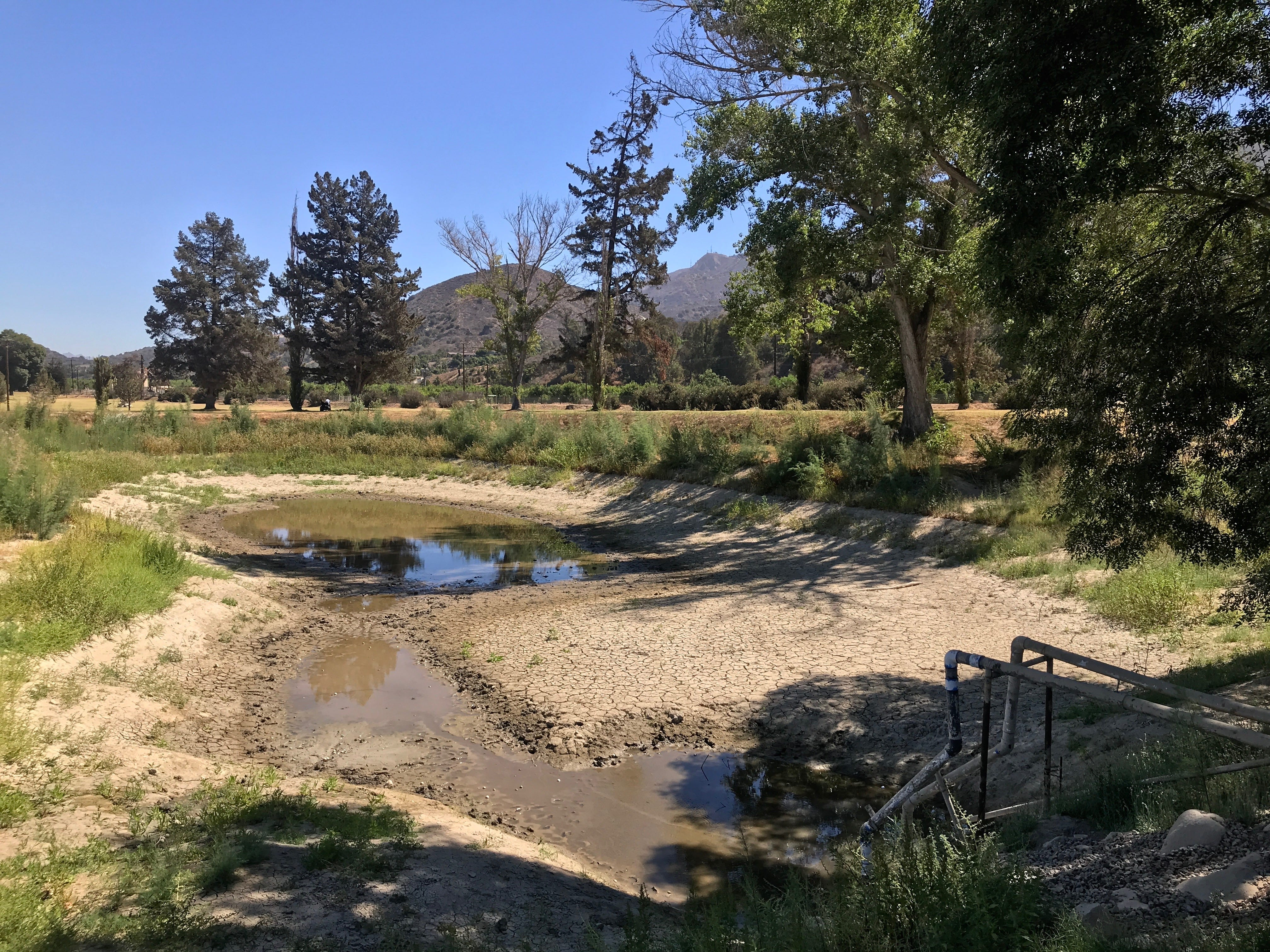 A photo from earlier this year shows the remains of a lake that used to store up to 1.7 million gallons of water from the Santa Clara River for use on the Mountain View Golf Course. Now the river is dry and the course is closing.
