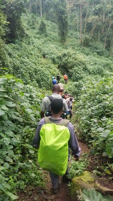 Bwindi Trail