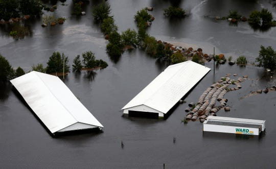 Hog farm buildings are inundated with floodwater from Hurricane Florence near Trenton, N.C., Sunday, Sept. 16, 2018.