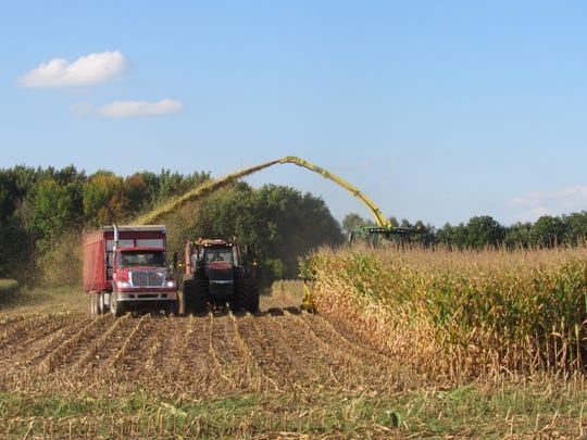 The empty truck pulls ahead of filled tractor and wagon as chopper continues to shoot chopped corn into its bed.