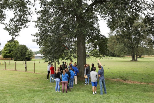 Students in Philo High Schools vocational ag class gather around a tree to measure and identify it.